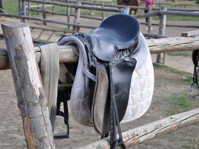 Horse saddles part of fraudulent insurance claims